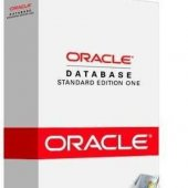 Oracle и SQL Видеоуроки для начинающих   Видеокурсы